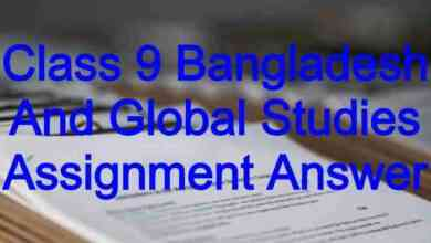 Class 9 Bangladesh And Global Studies Assignment Answer